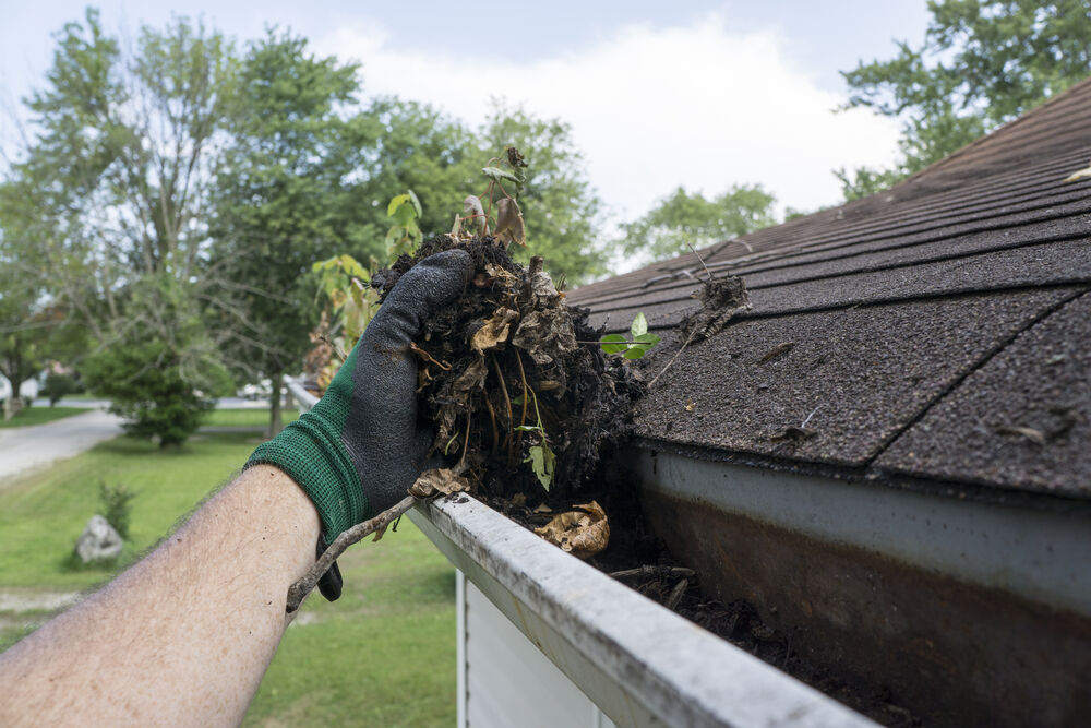 Top 5 Problems Caused by Clogged Gutters