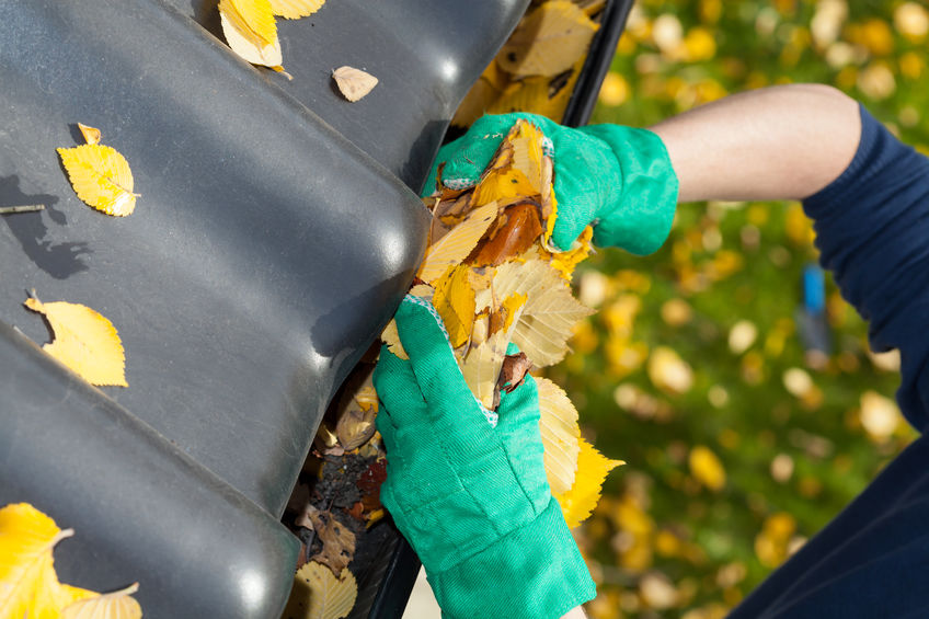 How Often Your Home or Business Should Clean Out Gutters