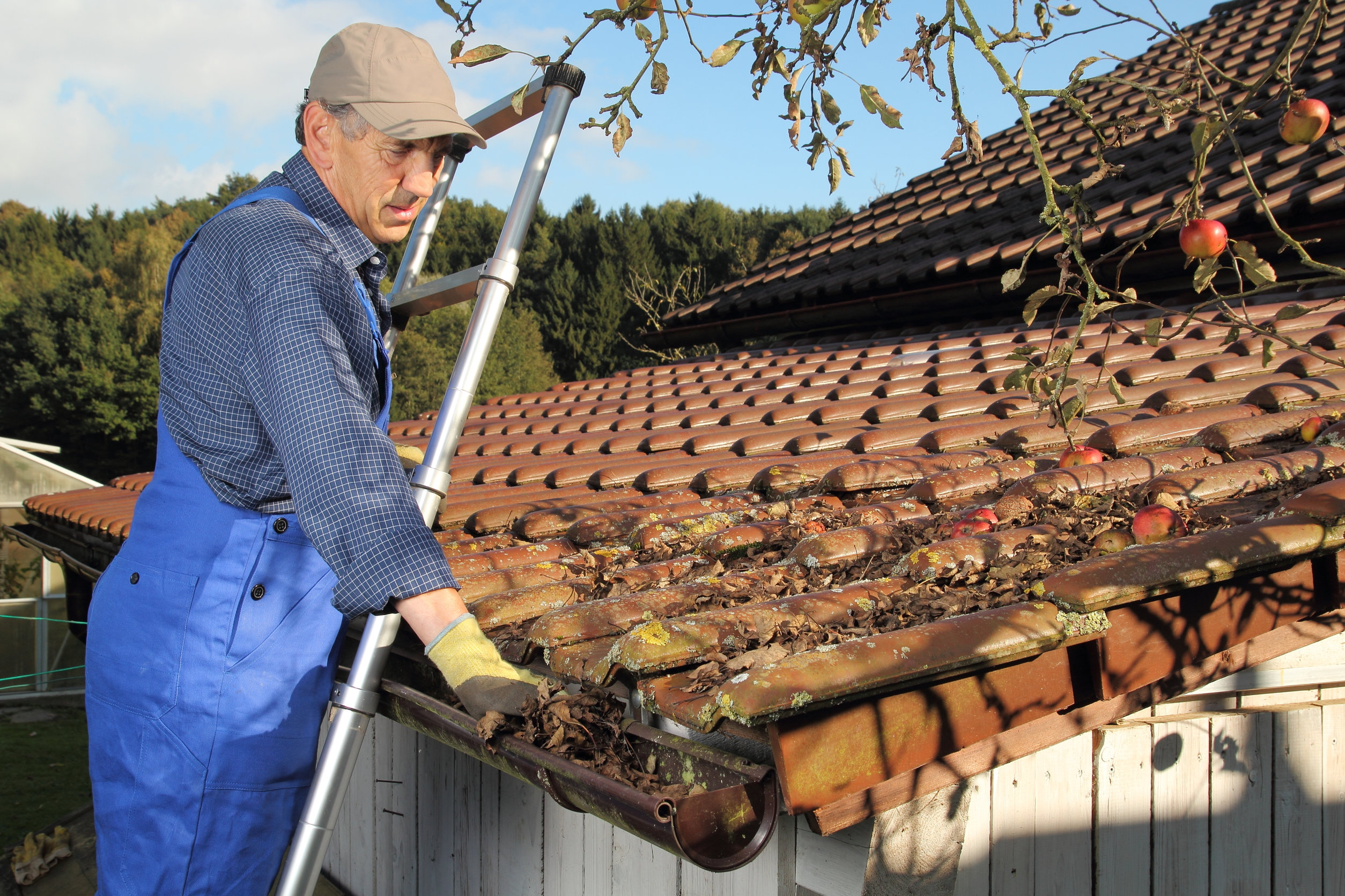 Why Your Roof Needs to Be Cleaned